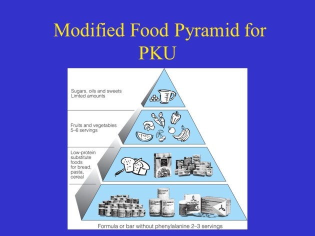 PKU-Food-pyramid