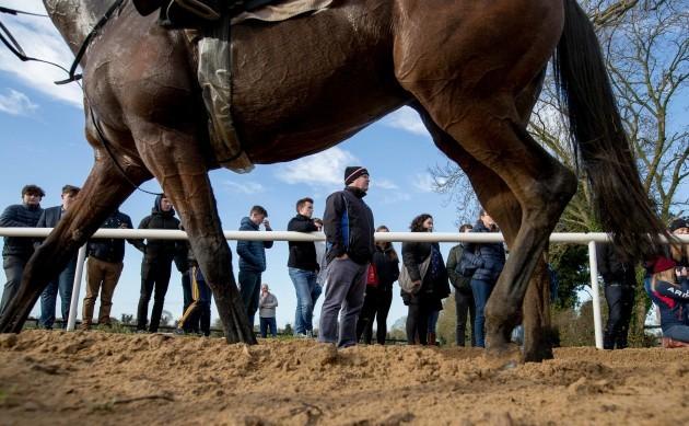 Gordon Elliott looks on as his horses do their morning work