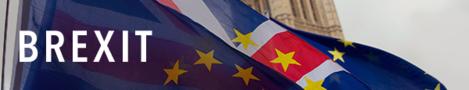 Brexit banner