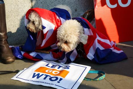 Brexit protest in London, UK - 28 Mar 2019