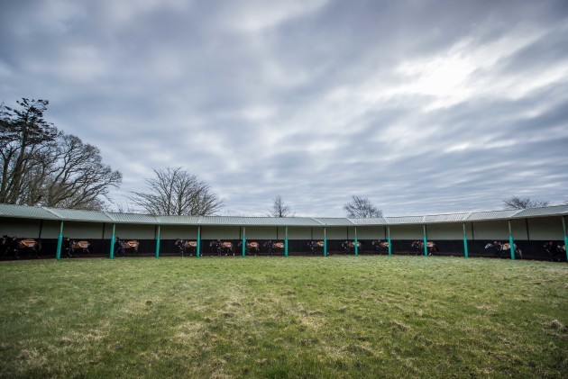 A view of Aidan O'Brien's string of horses in training at Ballydoyle