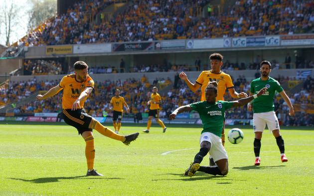 Wolverhampton Wanderers v Brighton & Hove Albion - Premier League - Molineux