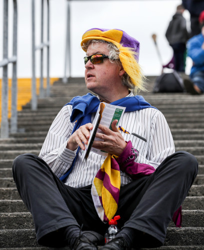 A Wexford supporter