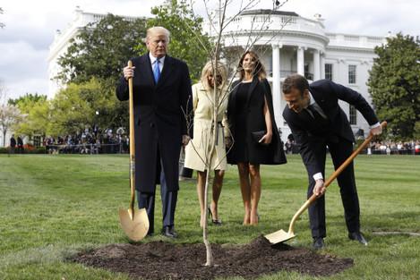 Macron Visit to the White House