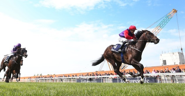 Shane Foley on Romanised wins the race