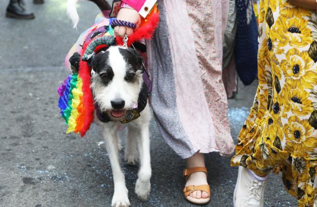 1975 Dublin Pride Parade_90574269 (1)