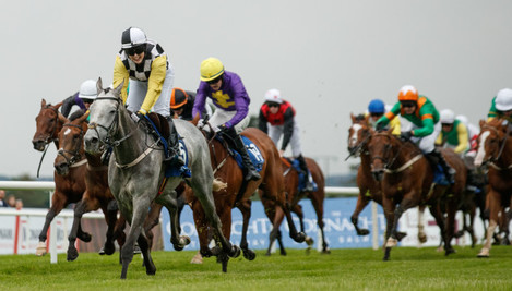 Jody Townend on Great White Shark goes clear to win