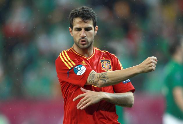 Cesc Fabregas celebrates scoring his sides final goal
