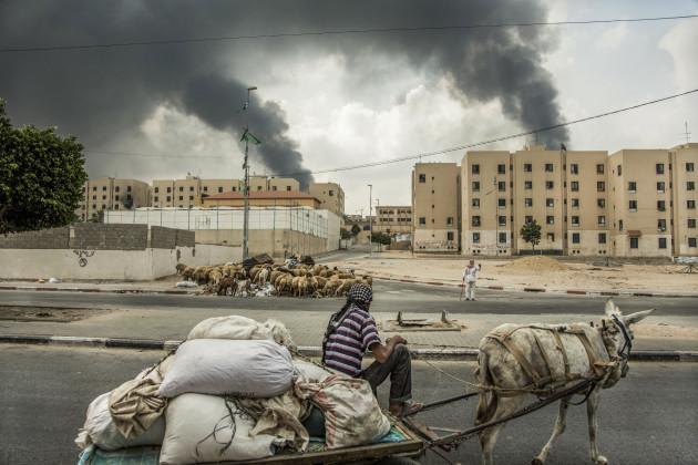 Gaza 09 (War 2014)