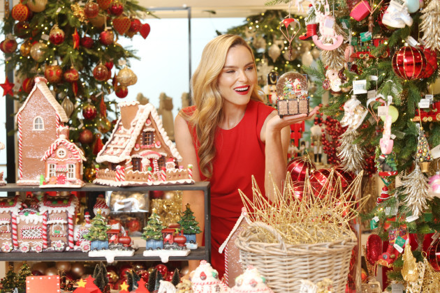 17  BT Christmas Store_90577654