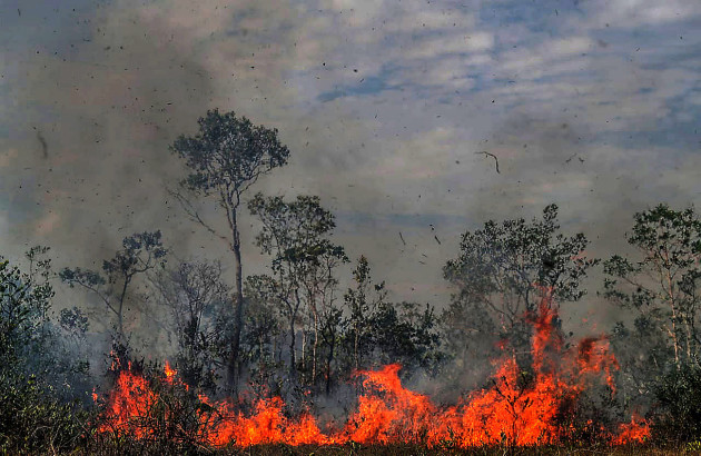 brazil-manicore-amazon-fire
