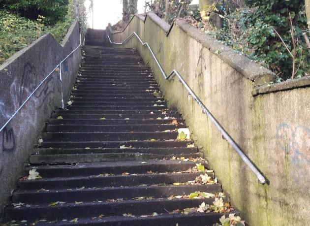 Burma Steps