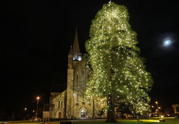 Tree of Light St Marys1