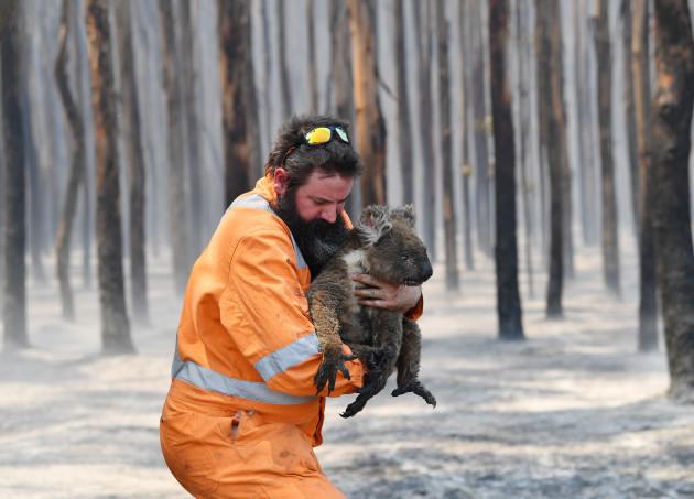 kangaroo-island-bushfires