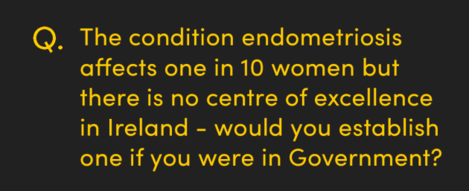 The condition endometriosis affects one in 10 women but there is no centre of excellence in Ireland - would you establish one if you were in Government