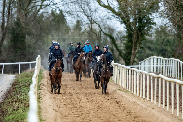 a-view-of-horses-out-on-the-gallops