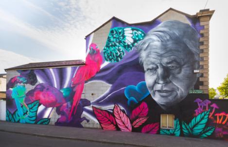 david-attenborough-mural-dublin