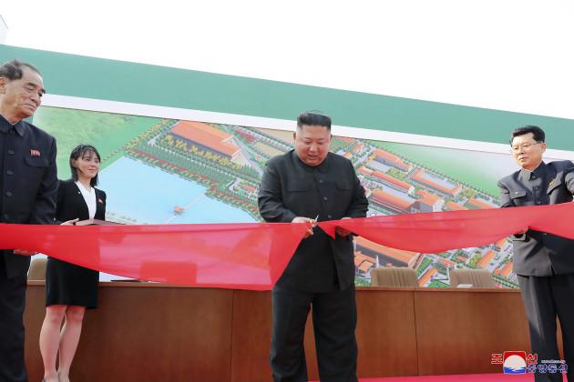 north-korea-kim