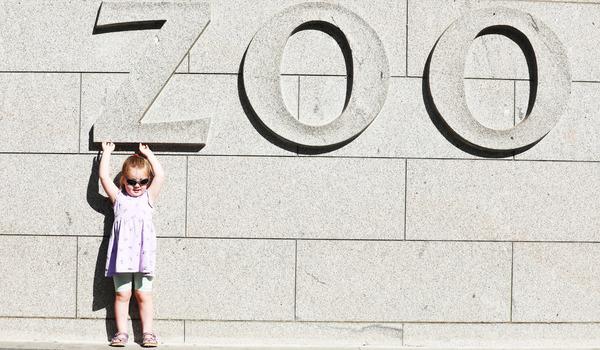 8041 Dublin Zoo (1)