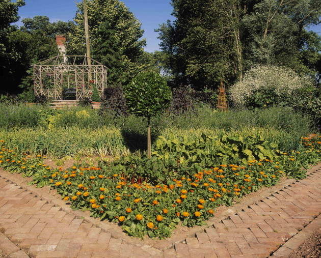 kitchen-garden-ballymaloe-midleton-co-cork-ireland