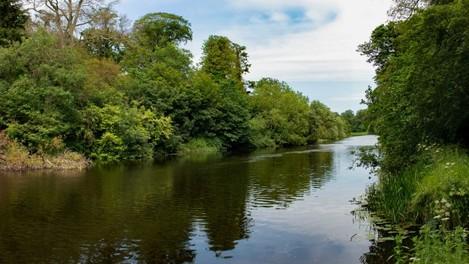 River in Park 1