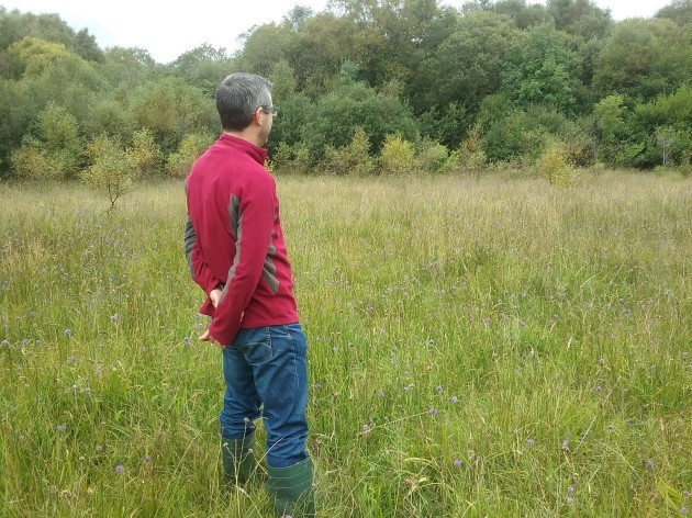 RBAPS Team Member in Marsh Fritillary Habitat_photo Dolores Byrne