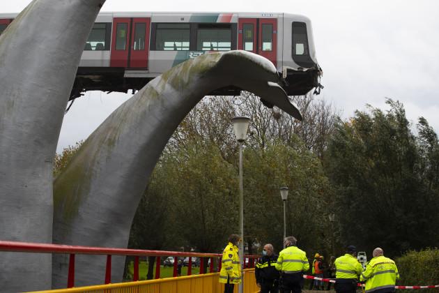netherlands-metro-whale