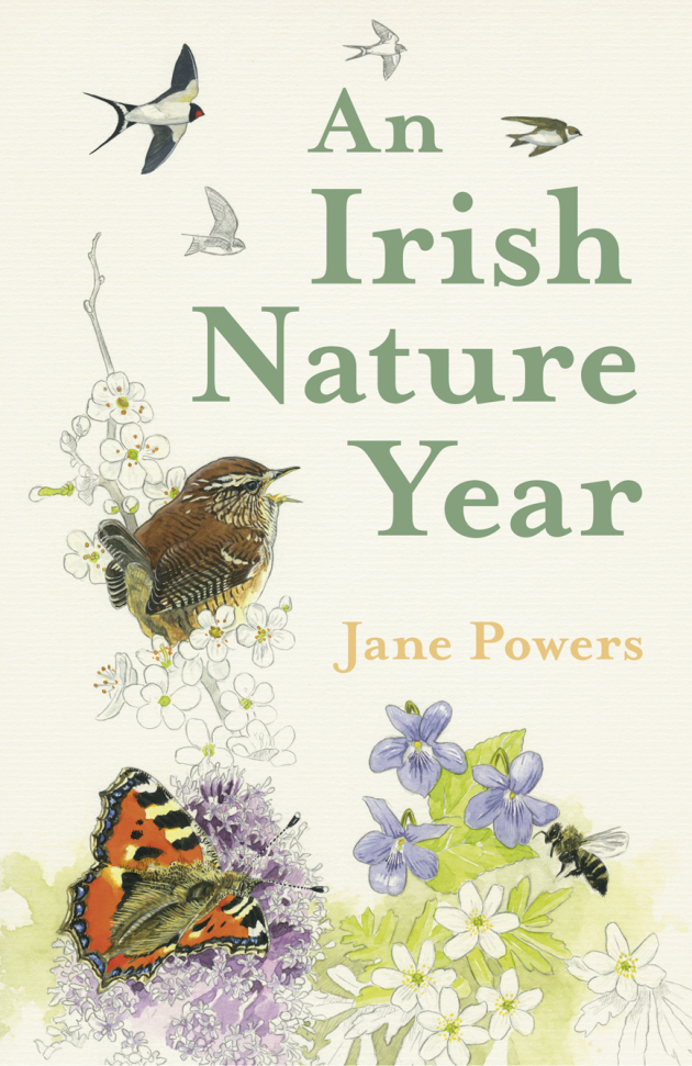 An Irish Nature Year front cover(1)