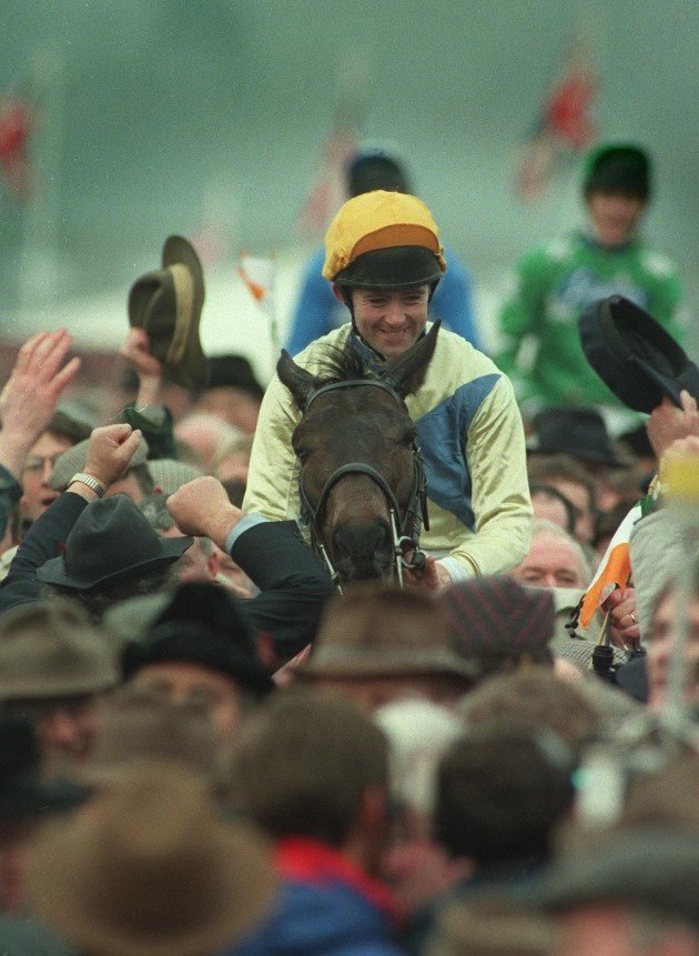 imperial-call-conor-odwyer-cheltenham-1431996