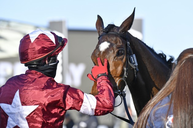 keith-donoghue-with-tiger-roll-celebrates-after-winning