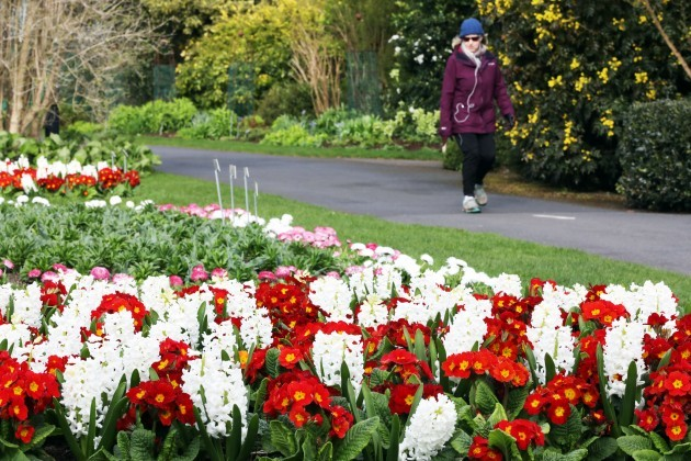 2829 Botanic Gardens