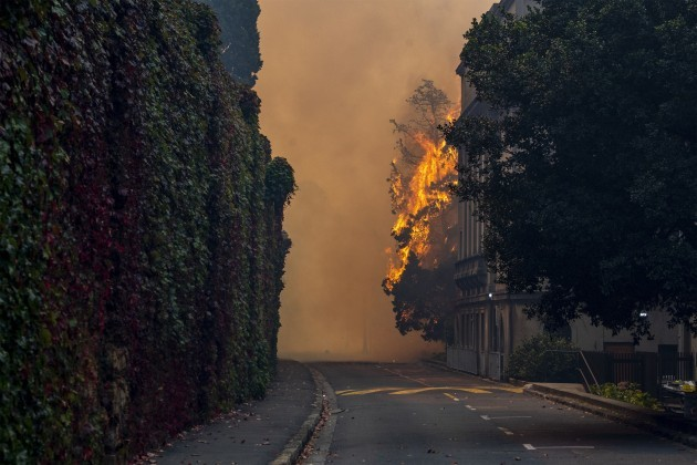 south-africa-cape-town-fire