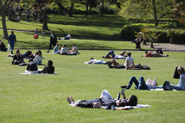 MERRION SQUARE IN THE SUN 2P8A2845