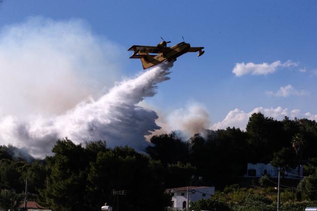 greece-alepochori-wildfire