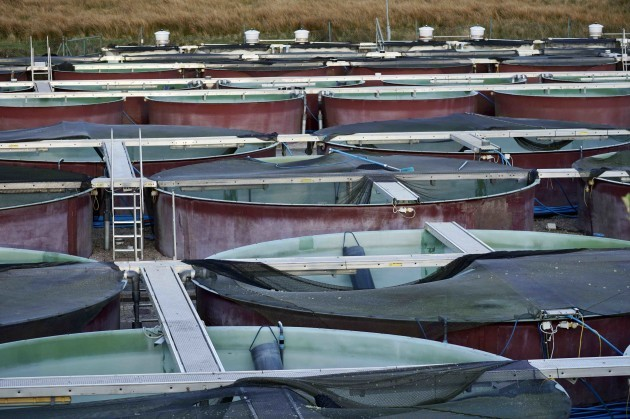 Salmon pens at Mowi's Lough Altan hatchery in Co Donegal
