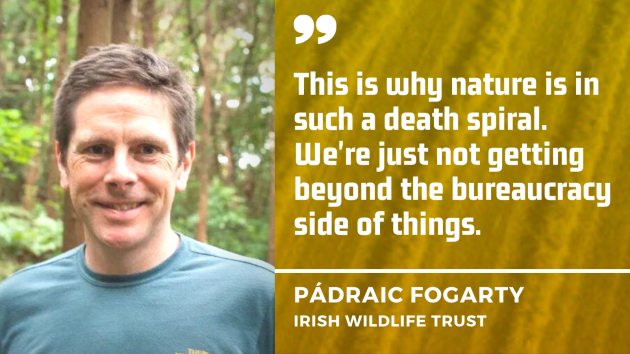 This is why nature is in such a death spiral. We're just not getting beyond the bureaucracy side of things - P Fogarty, Irish Wildlife Trust
