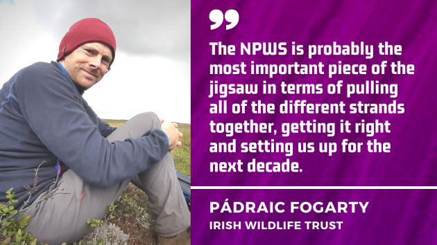 The NPWS is probably the most important piece of the jigsaw in terms of pulling all of the different strands together, getting it right and setting us up for the next decade - Irish Wildlife Trust