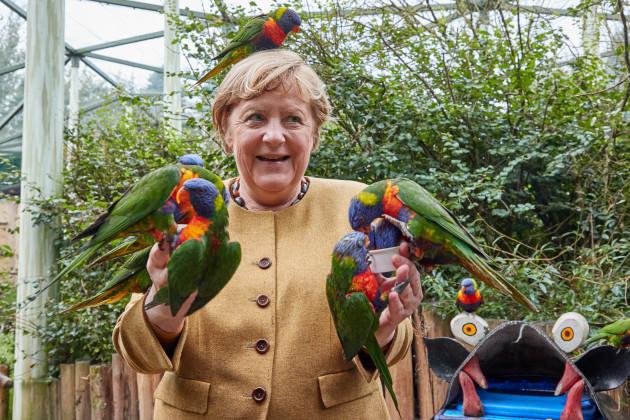federal-chancellor-angela-merkel-visits-the-bird-park-marlow