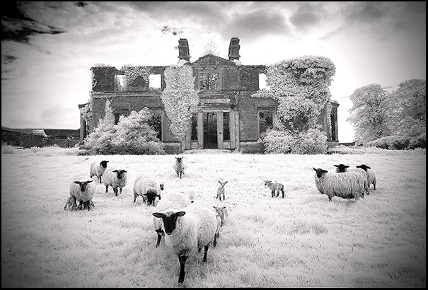 Hidden Ireland: Abandoned and ruined 'big houses' · TheJournal ie